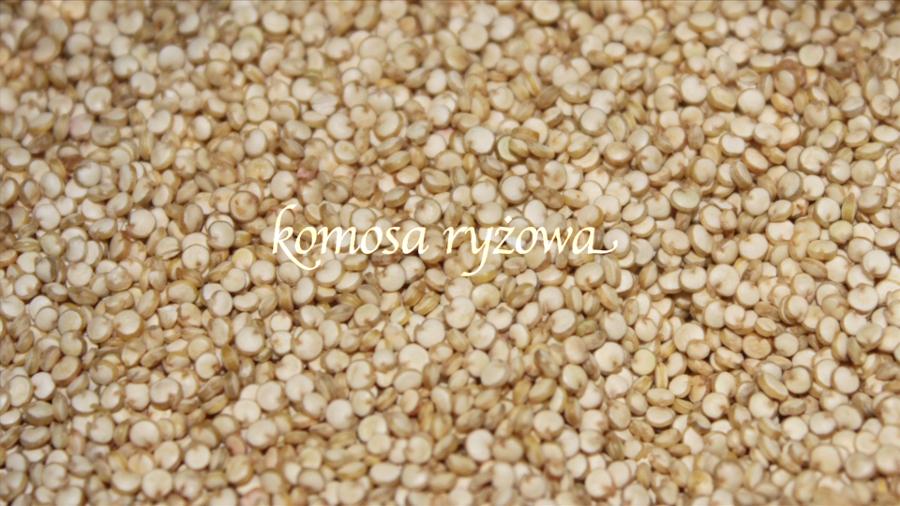 komosa1